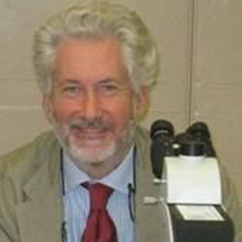 Dr. Massimo Landi